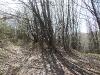 selo-radulovtsi-slivnitsa-16